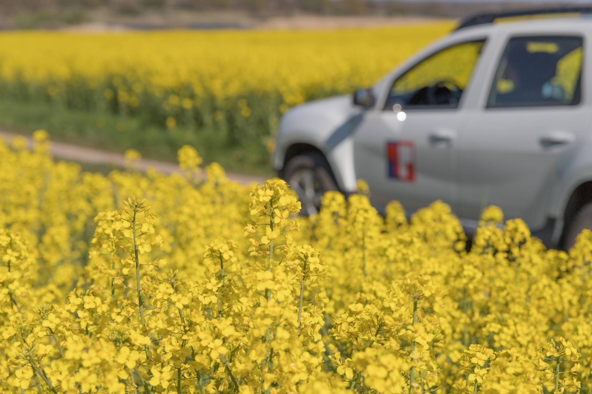 Transtema satsar på Eco Driving